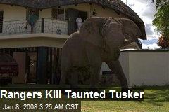Rangers Kill Taunted Tusker