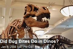 Did Bug Bites Do in Dinos?