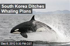 South Korea Ditches Whaling Plans