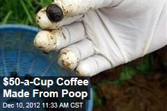 $50-a-Cup Coffee Made From Poop