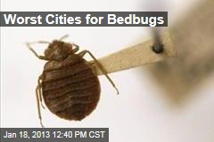 Worst Cities for Bedbugs