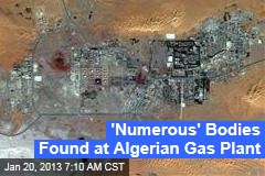 'Numerous' Bodies Found at Algerian Gas Plant