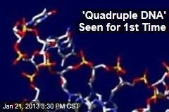 'Quadruple DNA' Seen for 1st Time