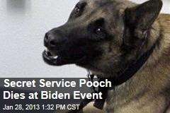 Secret Service Pooch Dies at Biden Event
