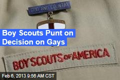 Boy Scouts Punt on Decision on Gays