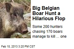 Big Belgian Boar Hunt a Hilarious Flop