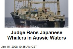 Judge Bans Japanese Whalers in Aussie Waters