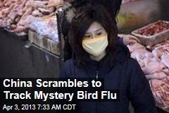 As 4 Fall Ill, China Scrambles to Track Mystery Bird Flu