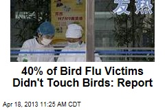 40% of Bird Flu Victims Didn't Touch Birds: Report