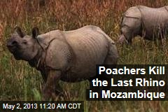 Poachers Kill the Last Rhino in Mozambique