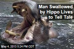 Man Swallowed By Hippo Lives to Tell Tale
