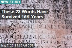 These 23 Words Have Survived 15K Years