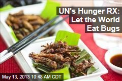 UN's Hunger RX: Let the World Eat Bugs