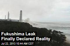 Fukushima Leak Finally Declared Reality