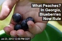 What Peaches? In Georgia, Blueberries Now Rule