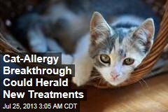 Cat-Allergy Breakthrough Could Herald New Treatments