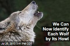 We Can Now Identify Each Wolf by Its Howl