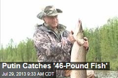 Putin Catches '46-Pound Fish'