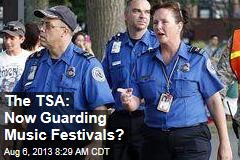 The TSA: Now Guarding Music Festivals?