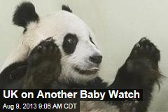 UK on Another Baby Watch
