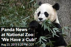 Panda News at National Zoo: 'We Have a Cub!'