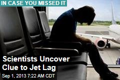 Scientists Uncover Clue to Jet Lag