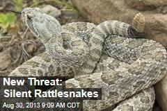 New Threat: Silent Rattlesnakes