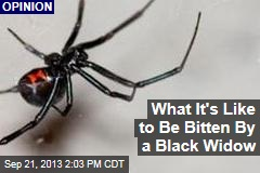 What It's Like to Be Bitten By a Black Widow