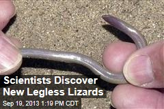 Scientists Discover New Legless Lizards