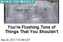 You're Flushing Tons of Things That You Shouldn't