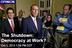 The Shutdown: Democracy at Work?