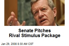 Senate Pitches Rival Stimulus Package