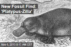 New Fossil Find: 'Platypus-Zilla'