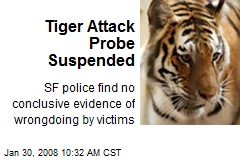 Tiger Attack Probe Suspended