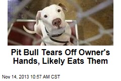 Pit Bull Tears Off Owner's Hands, Likely Eats Them