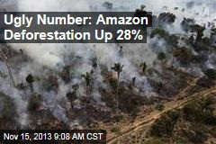 Ugly Number: Amazon Deforestation Up 28%