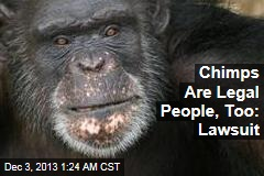 Lawsuit: Chimps Are Legal People, Too