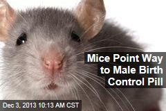 Mice Point Way to Male Birth Control Pill