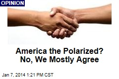 America the Polarized? No, We Mostly Agree