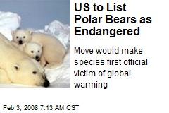 US to List Polar Bears as Endangered