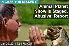 Animal Planet Show Is Staged, Plagued By Abuse