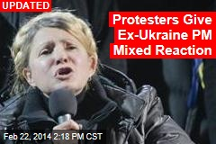 Ukraine's Opposition Icon Emerges