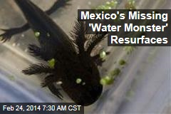 Mexico's Missing 'Water Monster' Resurfaces
