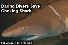 Daring Divers Save Choking Shark
