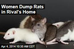 Women Dump Rats in Rival's Home