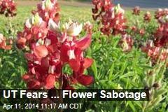UT Fears ... Flower Sabotage