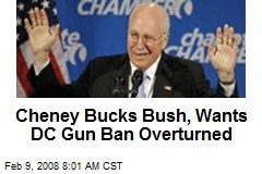 Cheney Bucks Bush, Wants DC Gun Ban Overturned