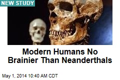 Modern Humans No Brainier Than Neanderthals