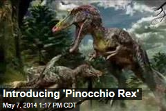Introducing 'Pinocchio Rex'