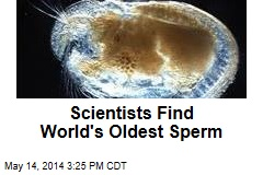 Scientists Find World's Oldest Sperm